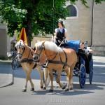 Horse-Drawn Carriages, Salzburg, Austria 3