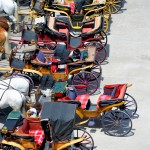 Lunchtime, Horse-Drawn Carriages, Salzburg, Austria