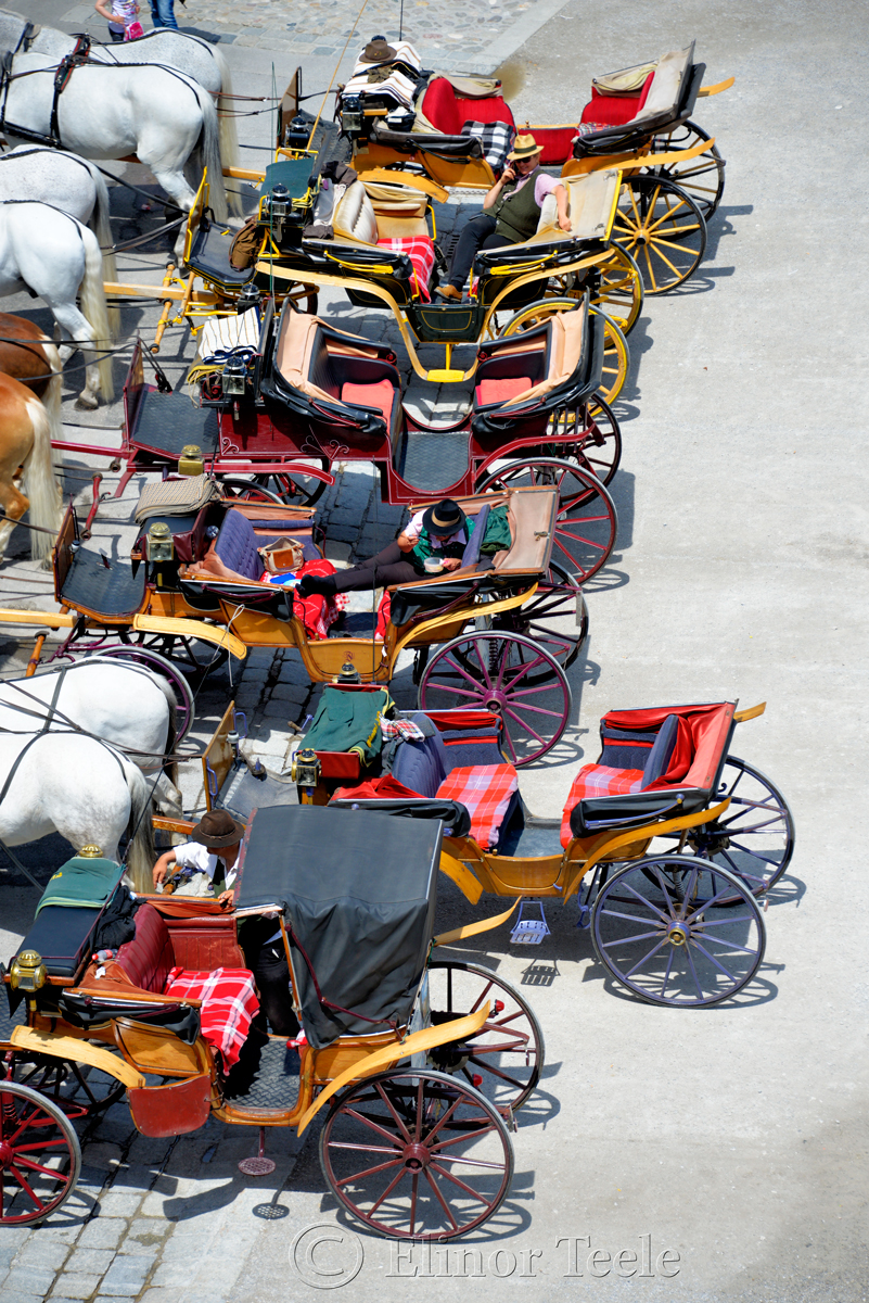 Lunchtime, Horse-Drawn Carriages, Salzburg, Austria