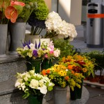 Flowers, Karntner Strasse, Vienna, Austria