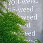 I-weed, Museumsquartier, Vienna, Austria