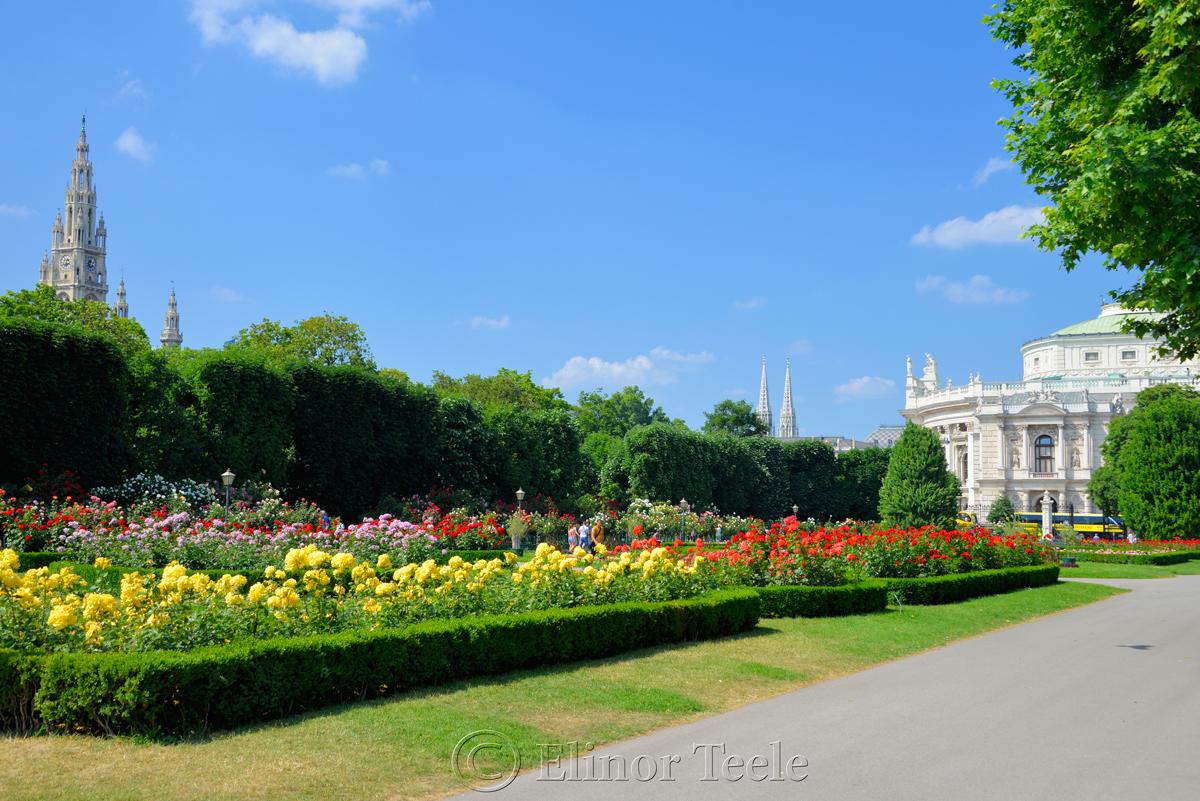 Rose Garden, Volksgarten, Vienna, Austria