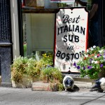 Best Italian Sub, North End, Boston MA