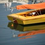 Yellow Sailboat, Annisquam MA