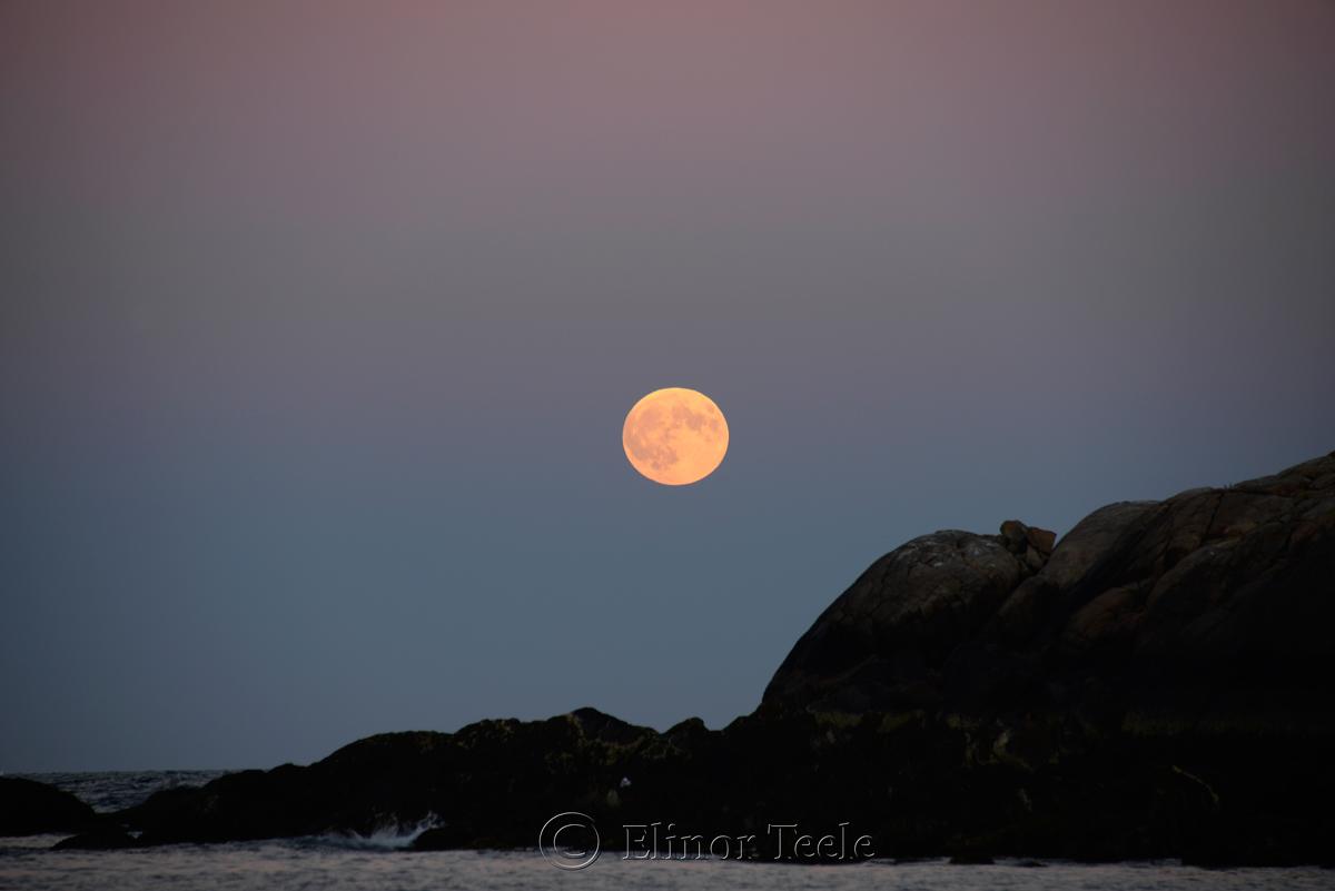 Full Moon, September 2015, Salt Island, Gloucester MA 1
