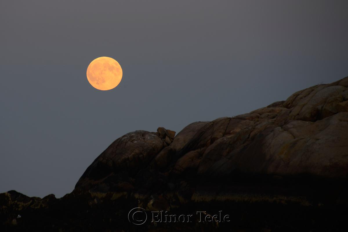 Full Moon, September 2015, Salt Island, Gloucester MA 2