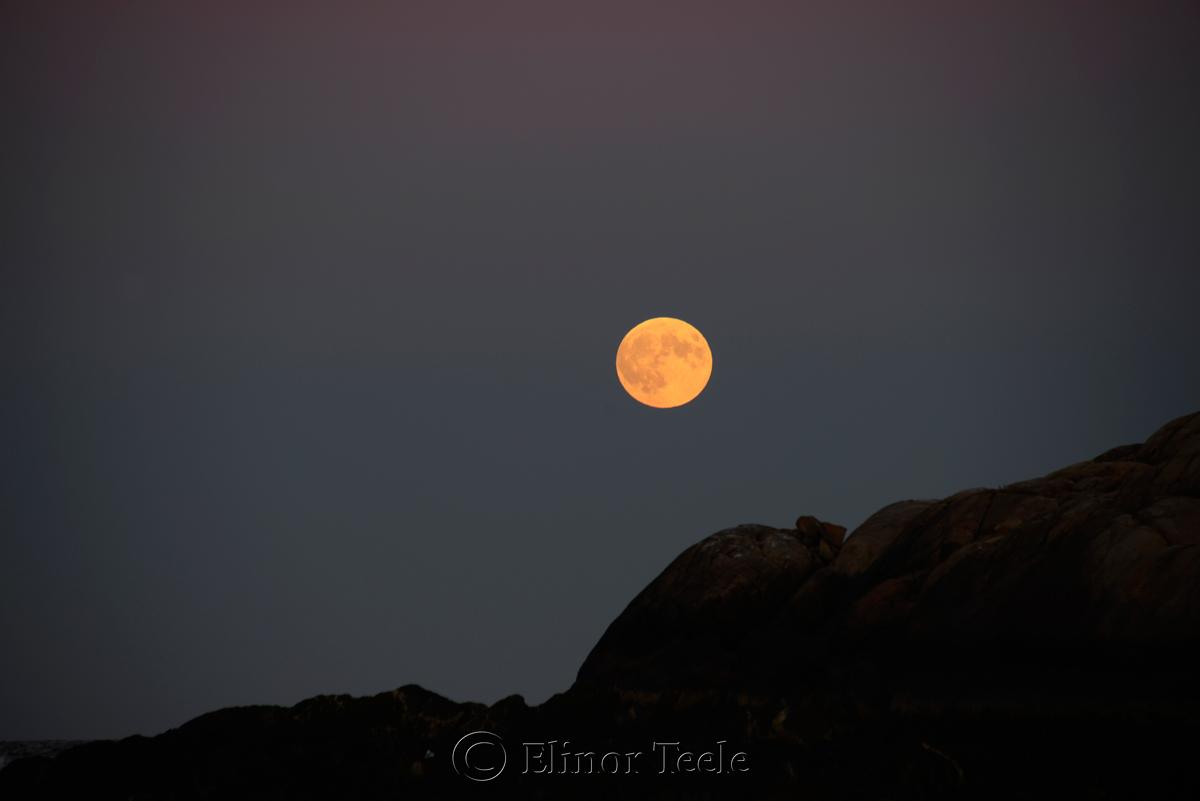 Full Moon, September 2015, Salt Island, Gloucester MA 3