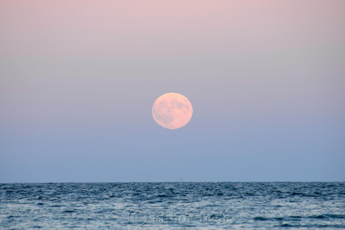 Full Moon Rising, September 2015, Gloucester MA