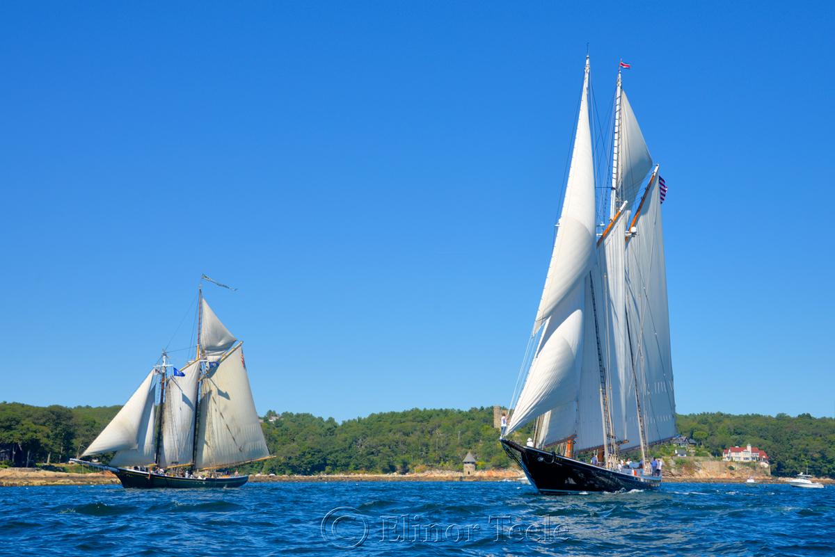 Parade of Sail, Gloucester Schooner Festival 2015 10