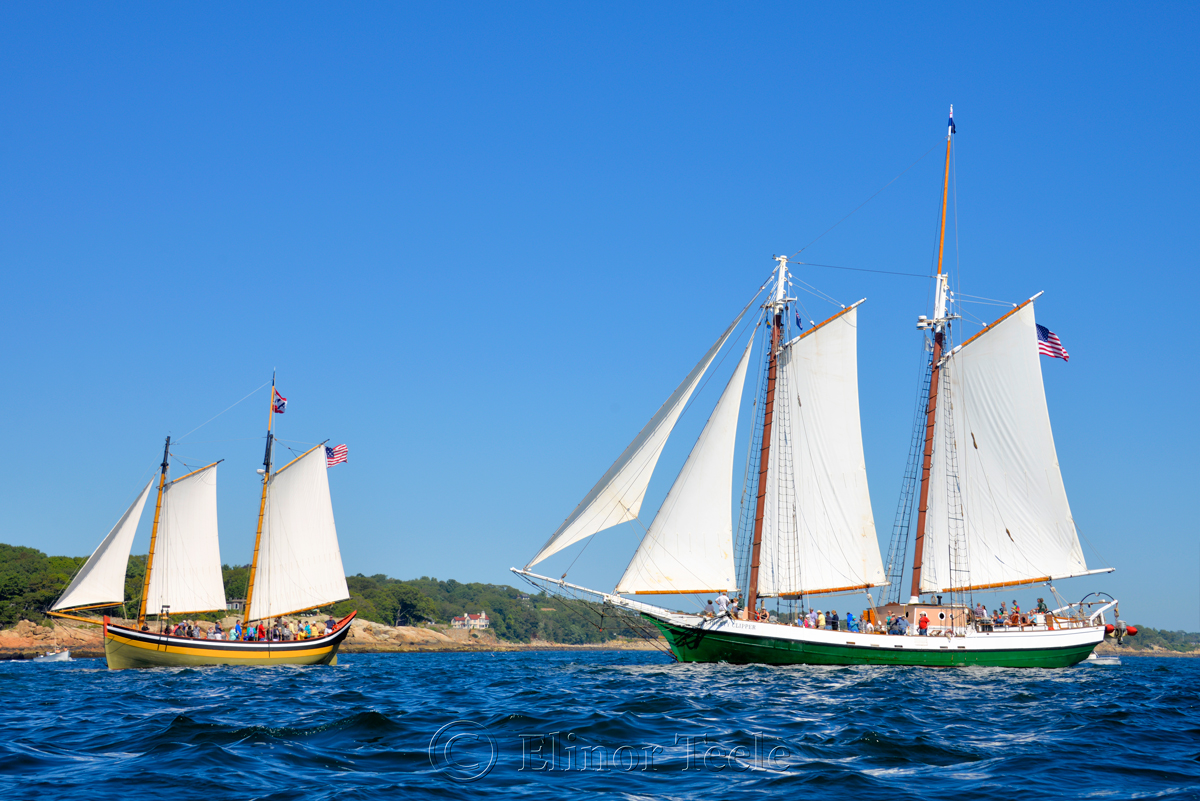 Parade of Sail, Gloucester Schooner Festival 2015 11
