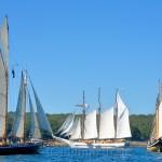 Parade of Sail, Gloucester Schooner Festival 2015 4