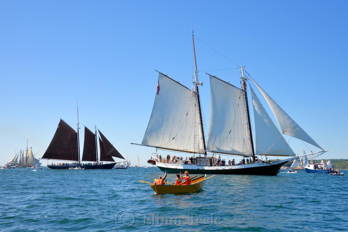 Parade of Sail, Gloucester Schooner Festival 2015 5