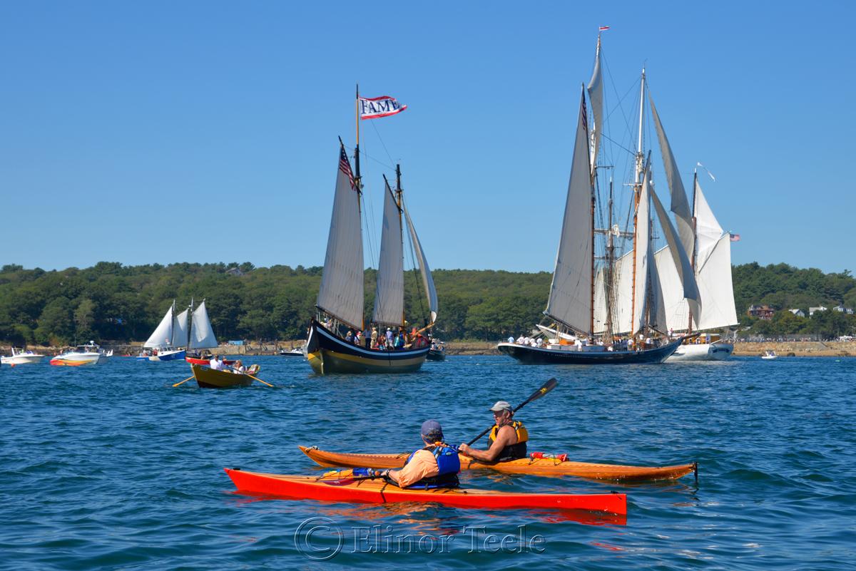 Parade of Sail, Gloucester Schooner Festival 2015 6