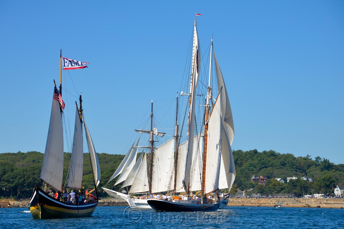 Parade of Sail, Gloucester Schooner Festival 2015 7