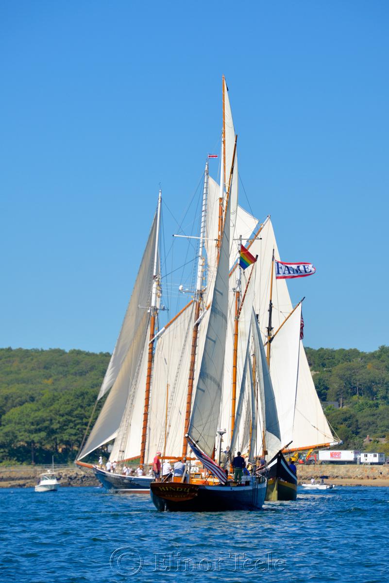 Parade of Sail, Gloucester Schooner Festival 2015 9