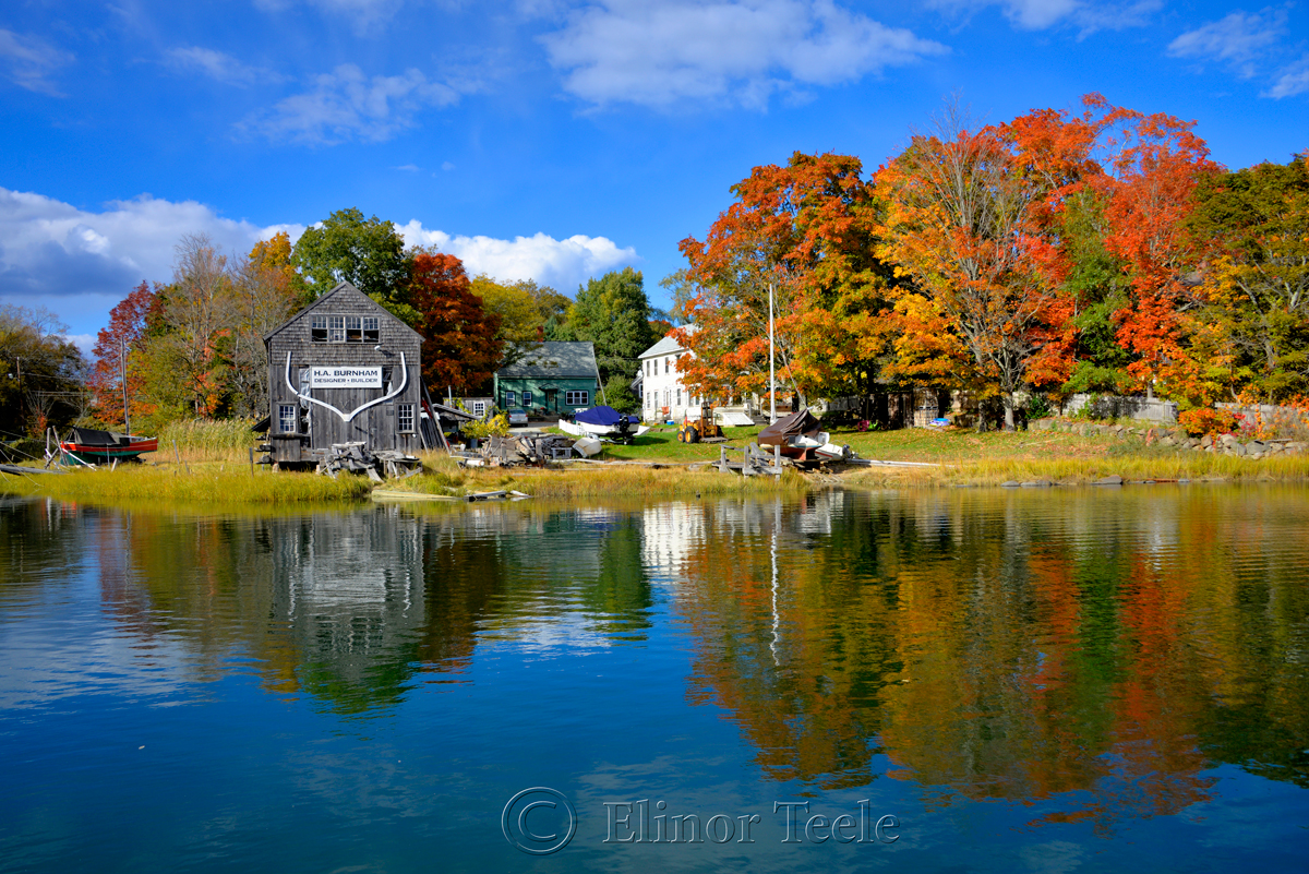 Fall Foliage – Burnham Boatbuilding, Essex MA 1