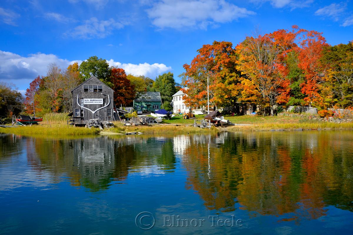 Fall Foliage - Burnham Boatbuilding, Essex MA 1
