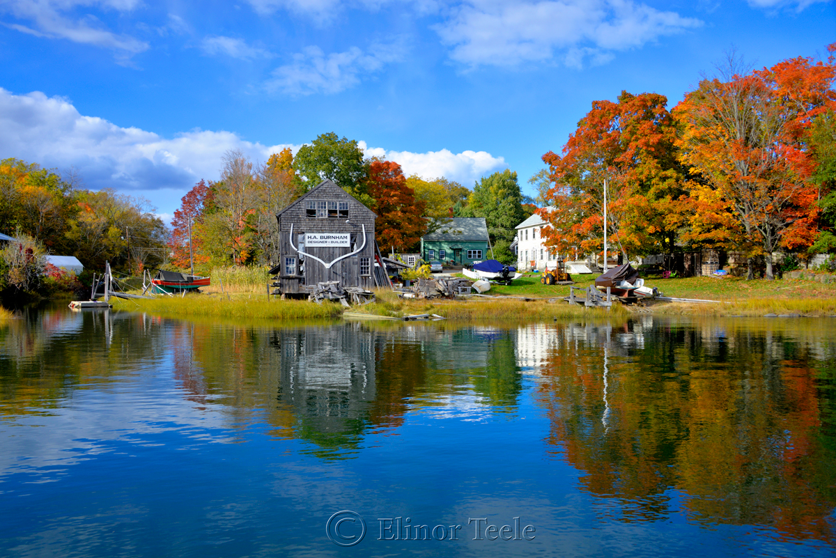 Fall Foliage - Burnham Boatbuilding, Essex MA 3