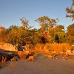 Fall Foliage - Low Tide on the Beach 1