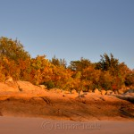 Fall Foliage - Low Tide on the Beach 2