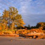 Fall Foliage - Pasture & Beach 2