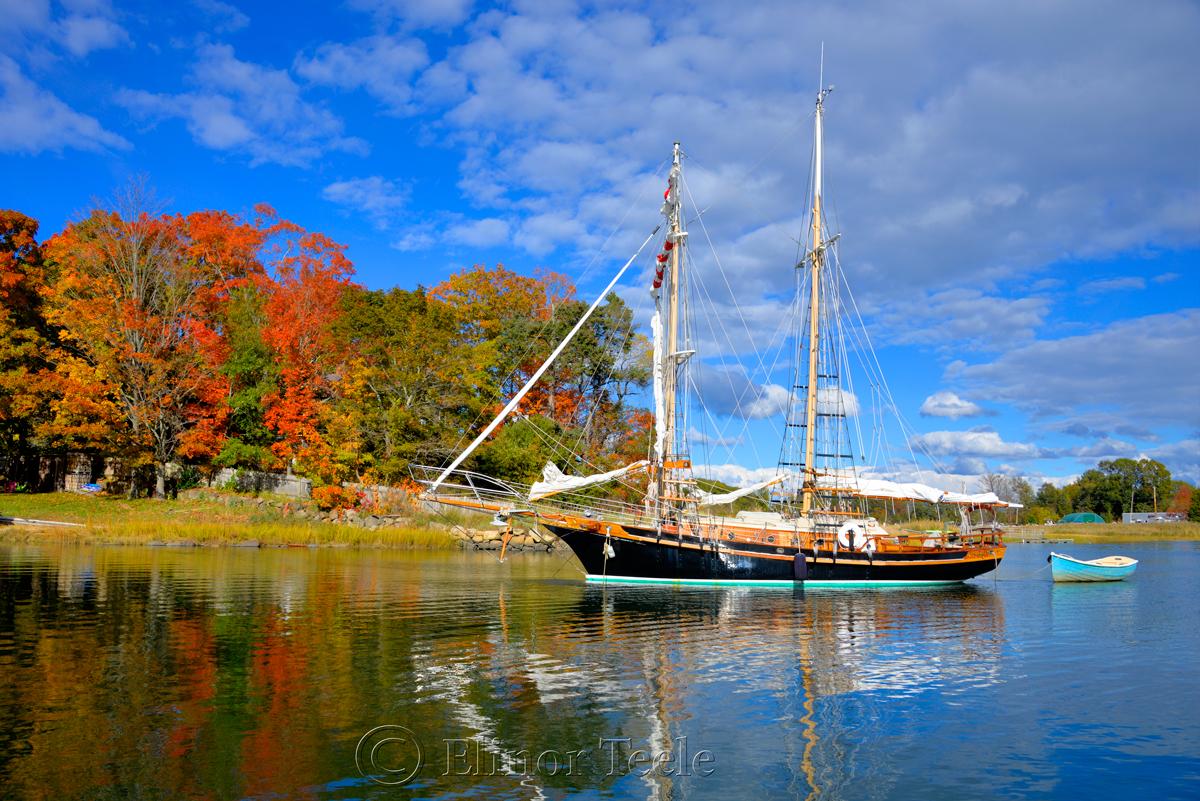 Fall Foliage - Safe Harbor, Essex MA