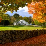 Fall Foliage - Visitor Center, Appleton Farms, Ipswich MA
