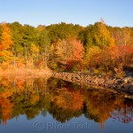 Fall Foliage, Goose Cove Reservoir, Gloucester MA 1