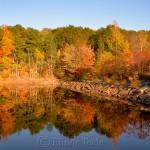 Fall Foliage – Goose Cove Reservoir, Gloucester MA 1