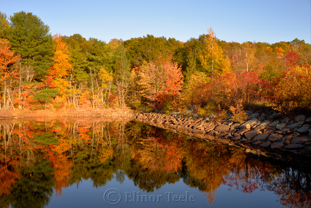 Fall Foliage – Goose Cove Reservoir, Gloucester MA 1