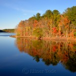 Fall Foliage, Goose Cove Reservoir, Gloucester MA 3