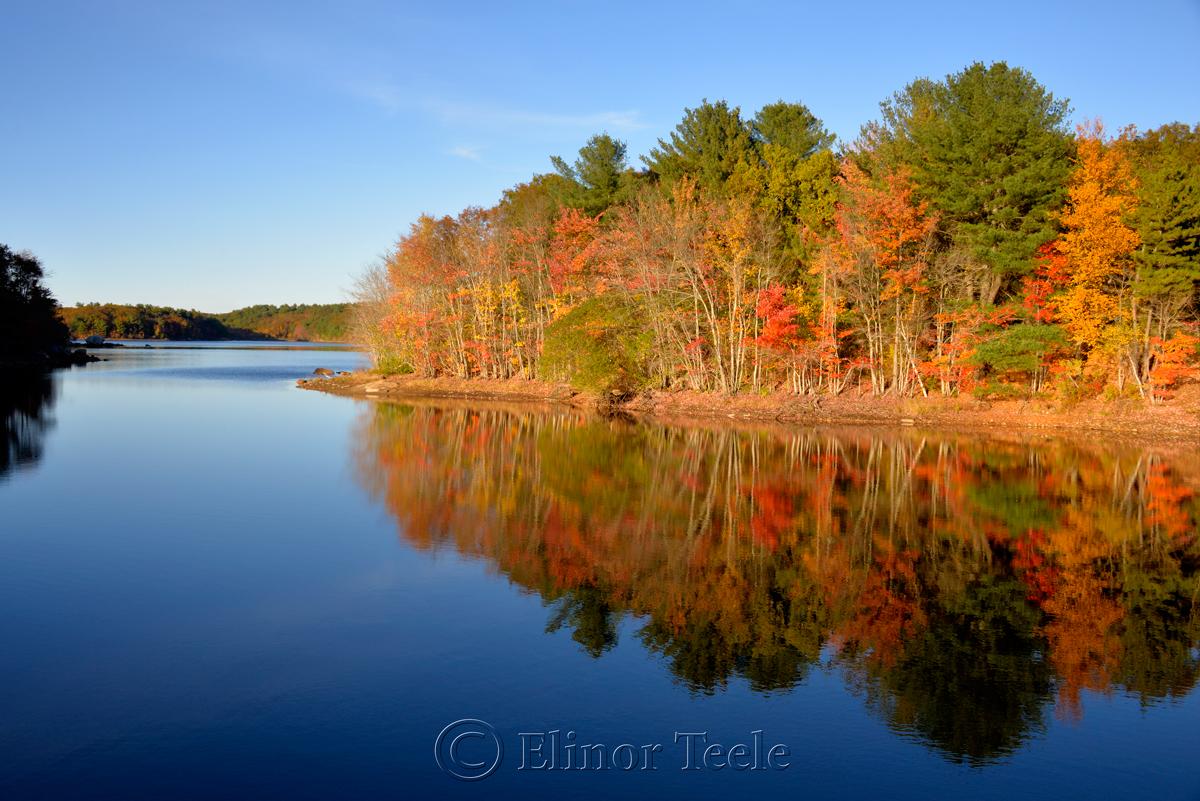 Fall Foliage, Goose Cove Reservoir, Gloucester MA 3