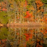 Fall Foliage – Goose Cove Reservoir, Gloucester MA 4