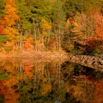 Fall Foliage, Goose Cove Reservoir, Gloucester MA 5