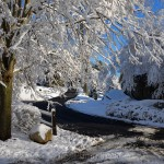 Adams Hill Road, February Snow 2016, Annisquam MA