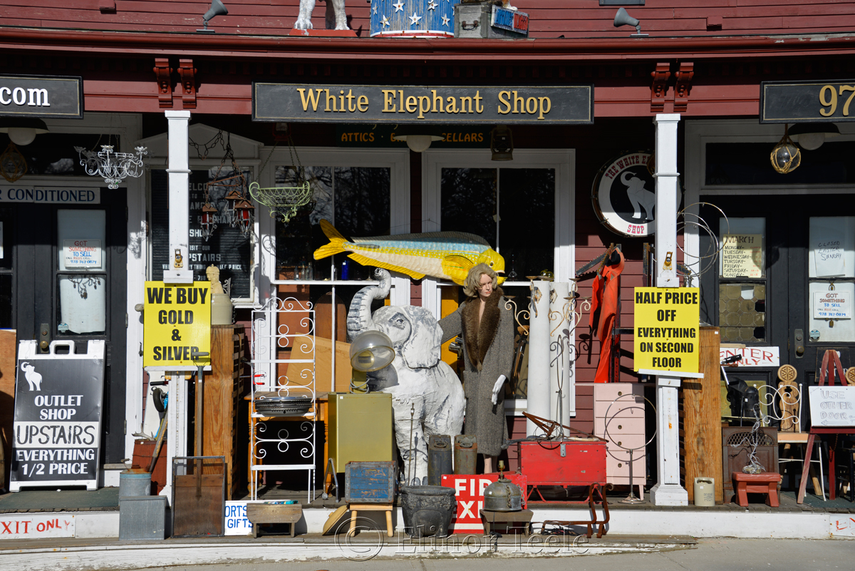 White Elephant, Essex MA 1