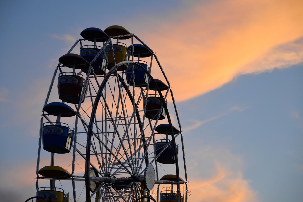 Ferris Wheel, St. Peter's Fiesta, Gloucester MA