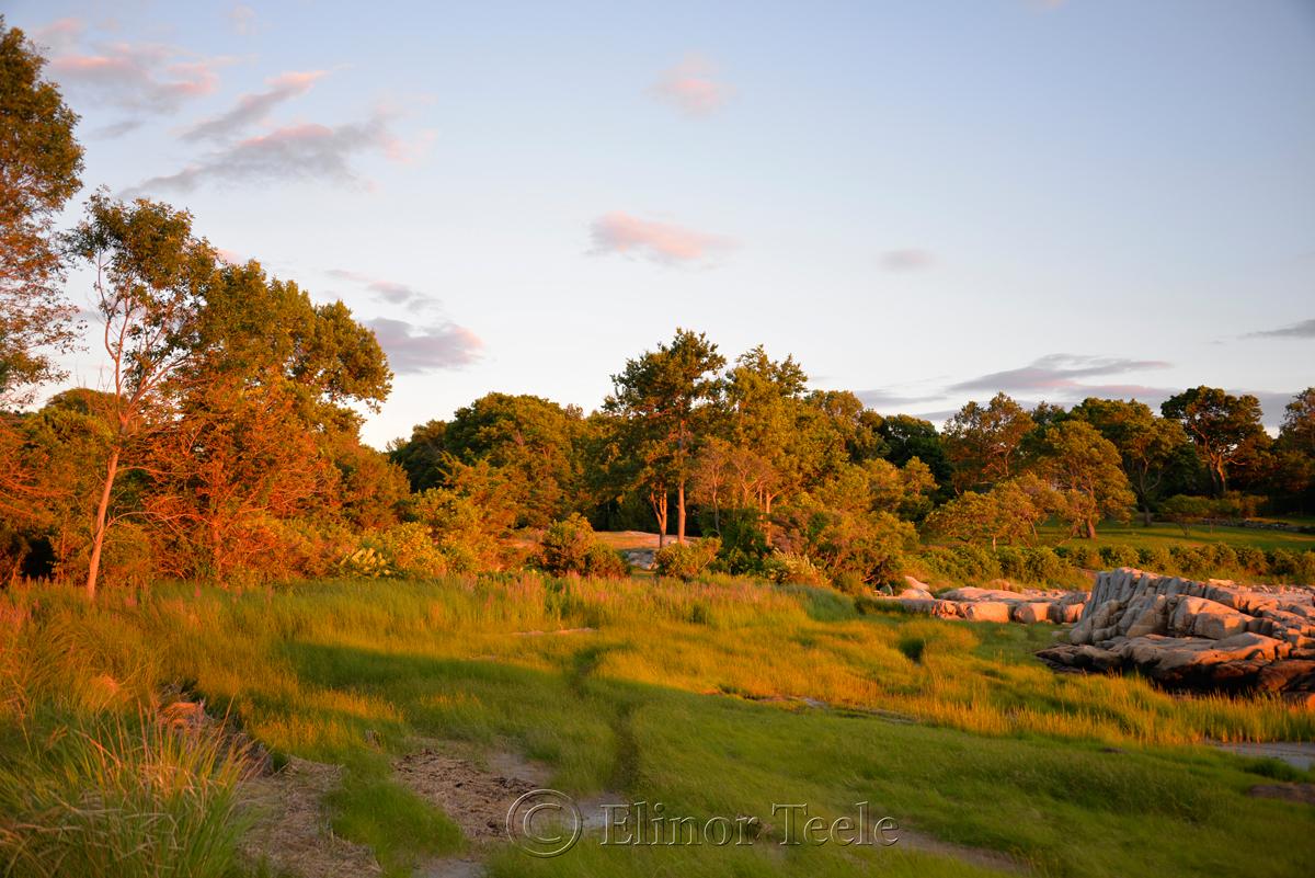 Pasture at the Golden Hour, Annisquam MA 6