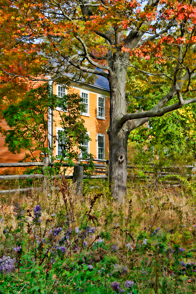 Cogswell's Grant in October, Essex MA 1