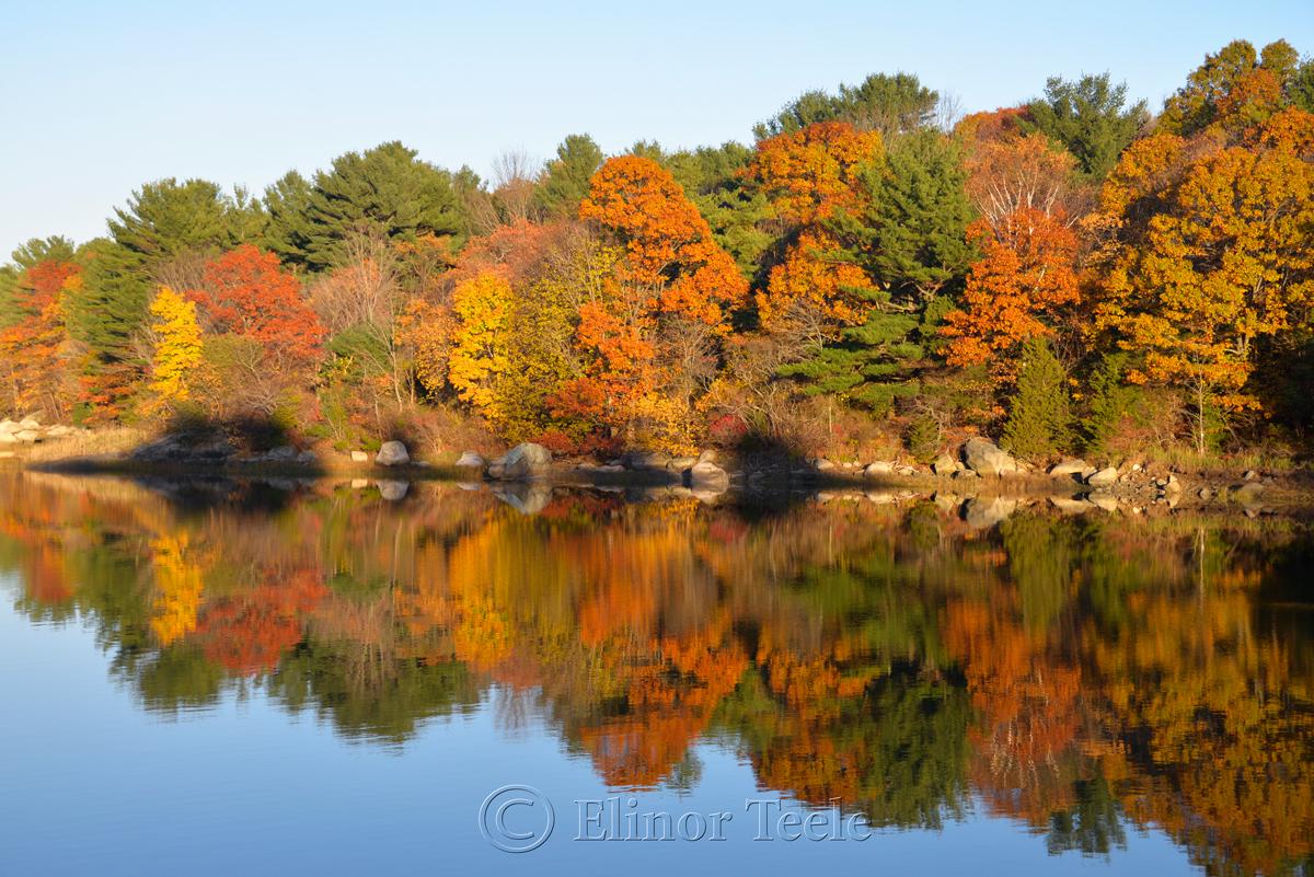 Goose Cove - Fall Foliage 2