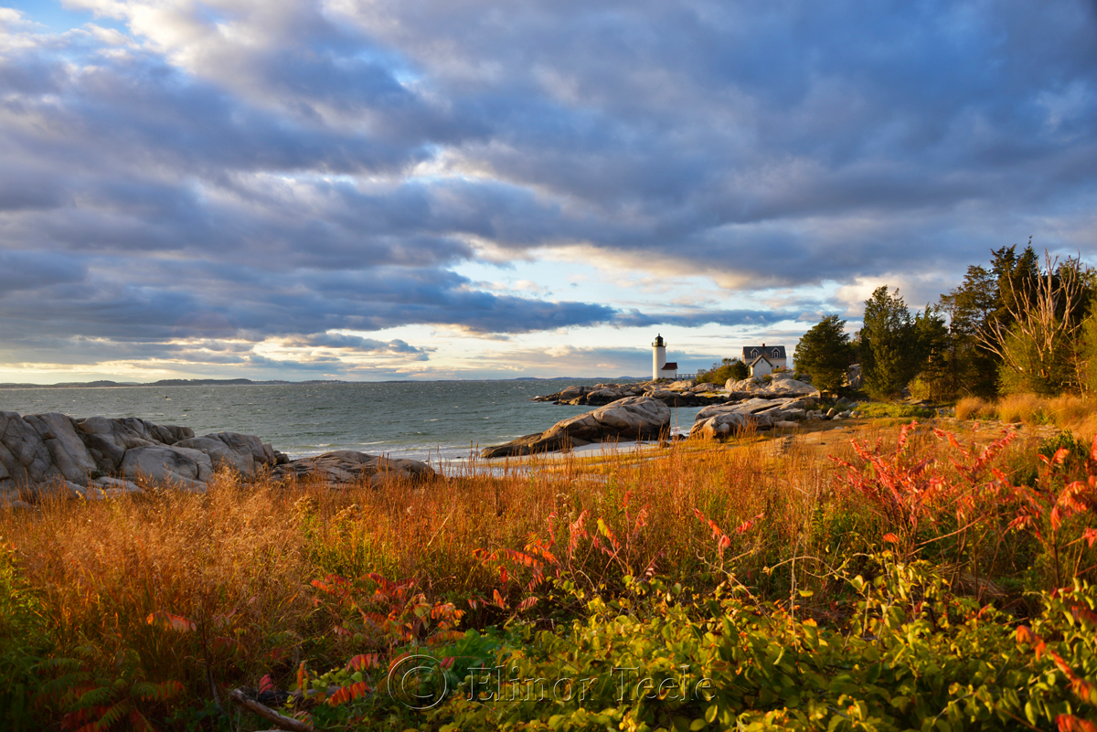 Lighthouse & Grasses in October