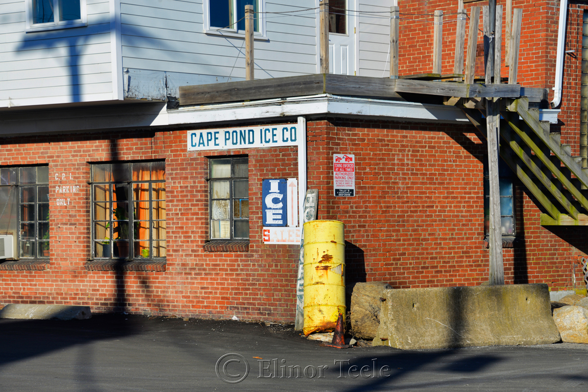 Cape Pond Ice - Gloucester 1