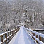 Annisquam Footbridge in February