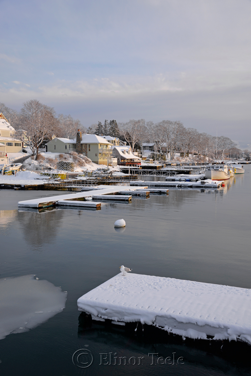 Annisquam Harbor in February 3