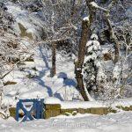 Blue Gate in the Snow, Annisquam MA