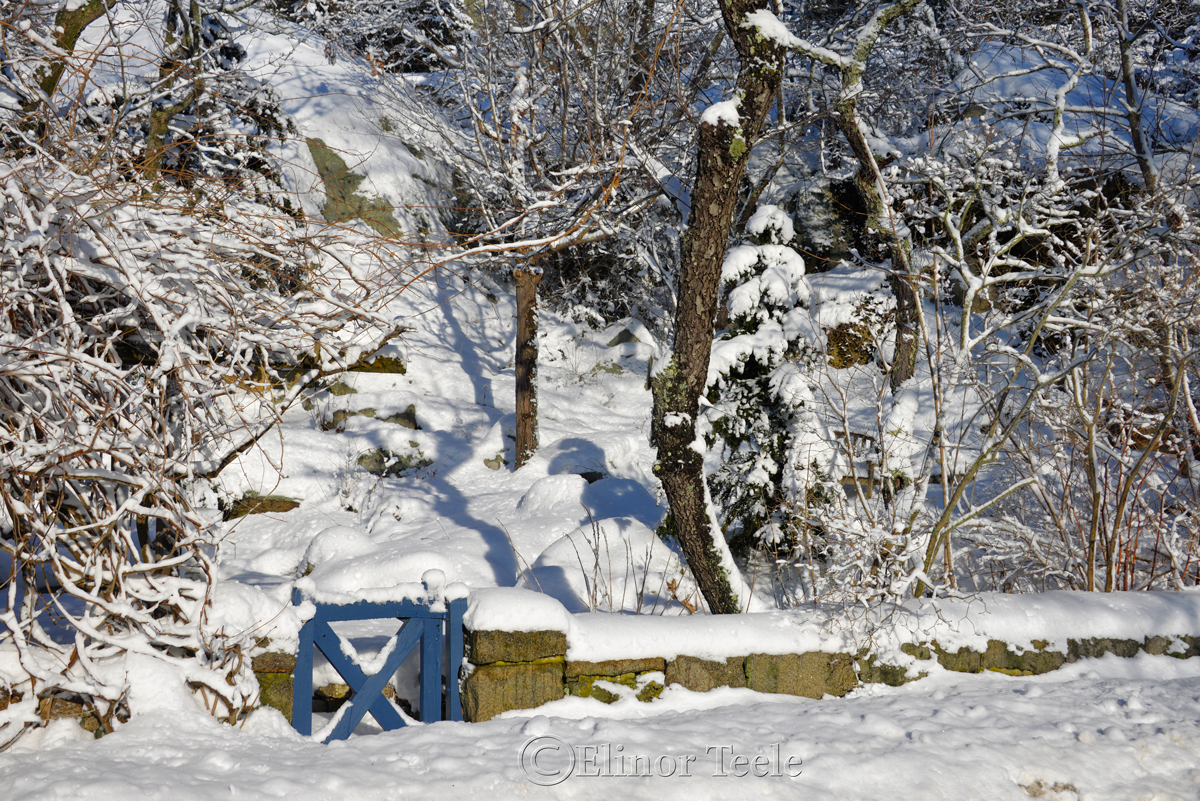 Blue Gate in the Snow, Annisquam MA