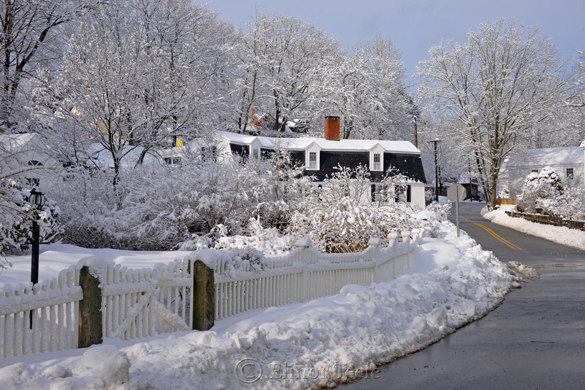 Walnut Street in February