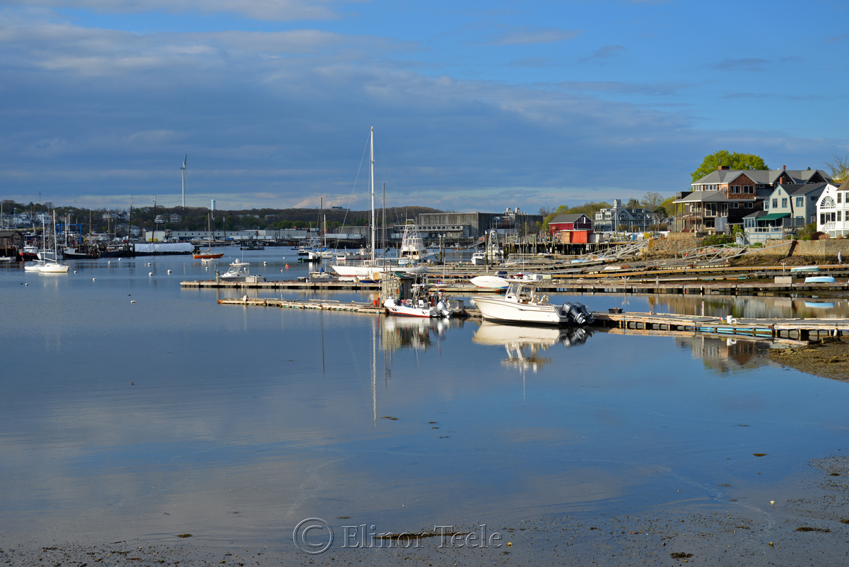 Smith Cove in May, Gloucester MA