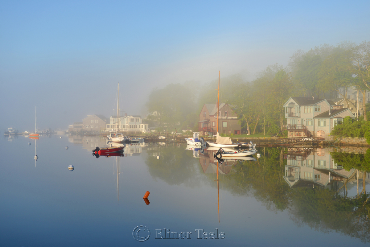 Fog on the Harbor 1