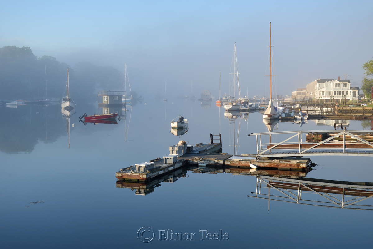Fog on the Harbor 2